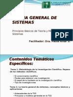 teoriadesistemas-110505143738-phpapp01