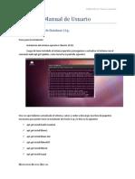 Manual de Usuario ORACLE 11g
