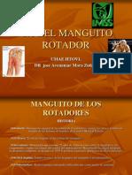 SX DEL MANGUITO ROTADOR artroscopía