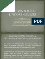 DETERMINACIÓN DE LÍPIDOS EN SANGRE