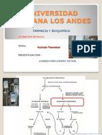 Andres Fernandez Victor Nutricion Parenteral Clase 16