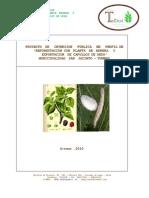 Proyecto Inversion Publica Perfil Reforestacion Planta Morera y Exportacion Capullos Seda