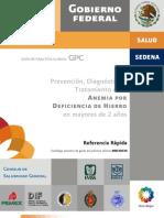 Prevencion Diagnostico y Tratamiento de La Anemia Por Defic
