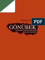 kerim gurbannepesow pdf