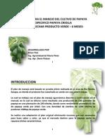 Plan de Manejo Papaya Digital[1]