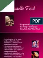 010 Fetal