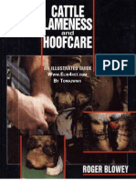 Cattle Lameness and Hoofcare - An Illustrated Guide LQ