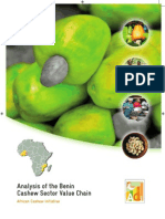 Cashew Processing in Benin