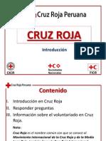 ICR 3.1