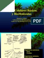BMB_BioMoleculas