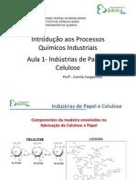 Aula 1- Indústrias de Papel e Celulose