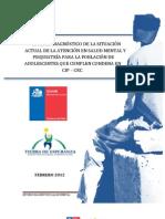 Informe Final Salud Mental SENAME 2012