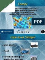 Canopy 2012
