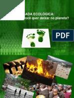 PEGADA ECOLÓGICA I