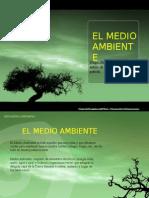 medioambiente-110802235045-phpapp01[1]