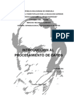 Introduccion Al Procesamiento de Datos Final