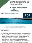 Cancer de Prostata Point