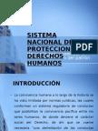Sistema Nacional de Proteccion de Derechos Humanos
