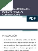Naturaleza Juridica Del Derecho Procesal Constitucional