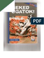 Korom_Gabor__Neked_Ugatok