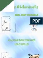 T.S.P Typus Abdominal Is