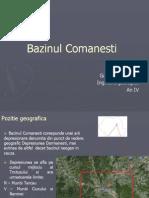 Bazinul Comanesti (2)