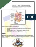 PDF of Stress Meter Report