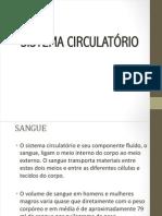 CIRCULATÓRIO