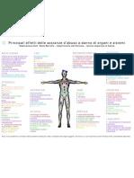 Principali effetti delle sostanze d'abuso a danno di organi e sistemi