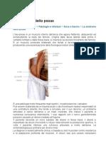 Patologie Ed Infortuni