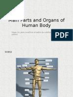 8th Grade Parts and Organs