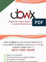 Presentation Dowix FR