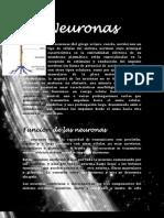 Neuronas completo