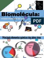 Biomeléculas novo