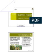 T1 Obj y Planif Invent a Rio Forestal_v4