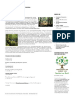 Forests in Slovenia|Government of the Republic of Slovenia