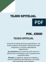 TEJIDO EPITELIAL 1 clase