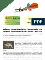 Mais um animal doméstico morre envenenado no bairro Castanho