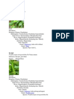 klasifikasi tumbuhan merambat
