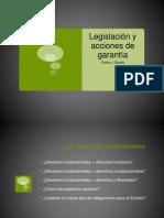 Legislacion y acciones de garantía