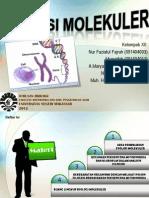 Evolusi Molekuler