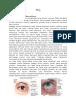 Anatomi,, Histologi Dan Fisiologi