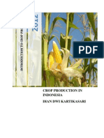 Crop Production in Indonesia (Dian Dwi)