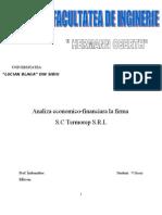 Analiza Economica-financiara La S.C Termorep S.R.L