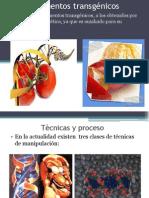 Alimentos Trasgenicos Arrieta Ivanosorio Anderson 1221880666079529 8