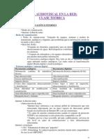 COM. AUD. en la RED - TEÓRICA