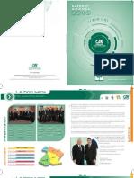 Rapport CA 2010