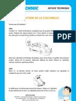 MECATECHNIC Evolution de La Coccinelle