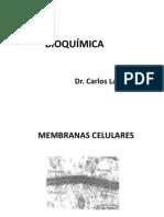 Curso Bioquimica Enfermeria 2011 (Nuevo)