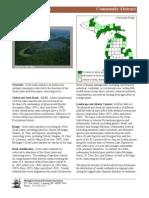 Great Lakes Marsh